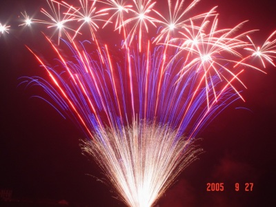 mine firework.jpg